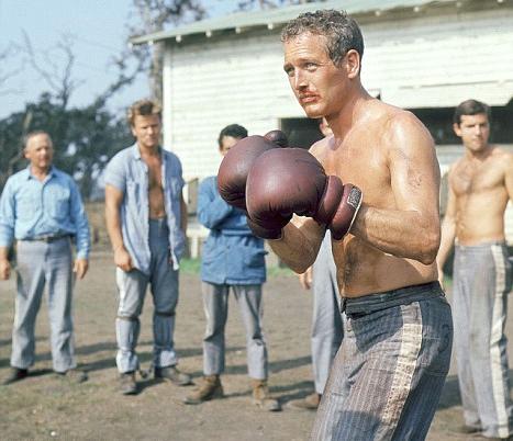 cool-hand-luke-boxing (1)